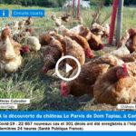 aperçu du reportage sur les poules du chateau le parvis à camblanes et meynac en gironde